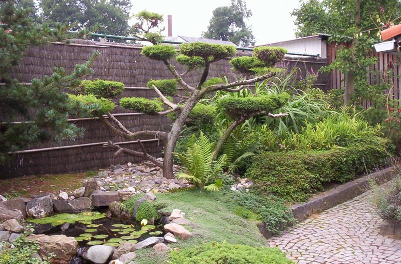 Dhiba tuinen en vijvers for Zen tuin aanleggen